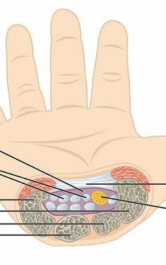 terapia ręki kurs warszawa